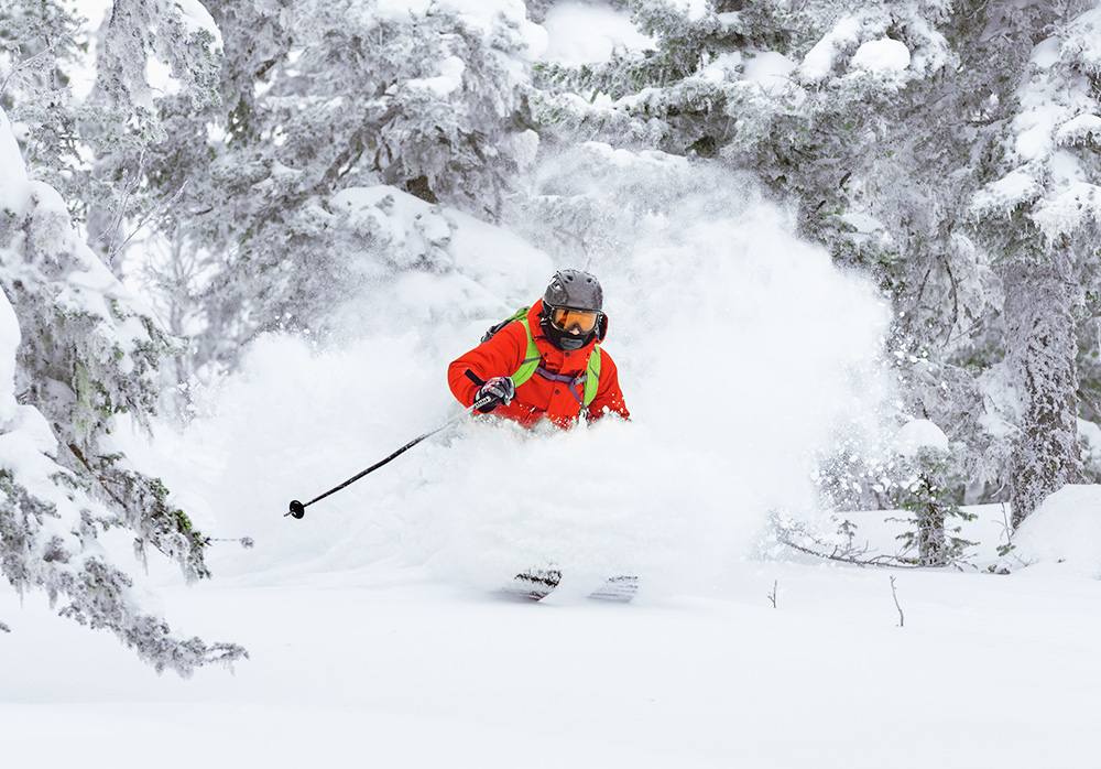 """Featured image for """"Ready for powder? Discover the best freeride tips"""""""